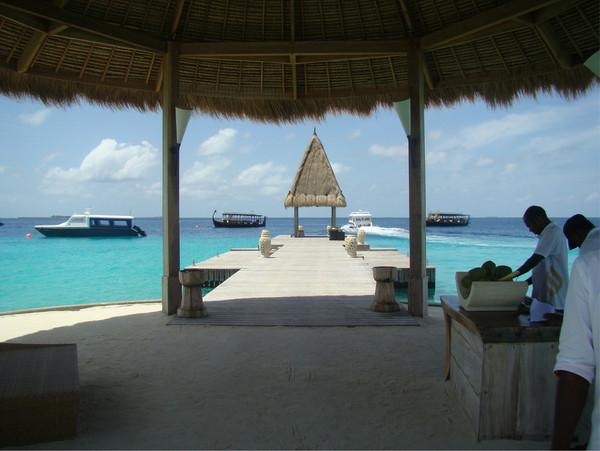 卓美亚维塔维丽岛图片