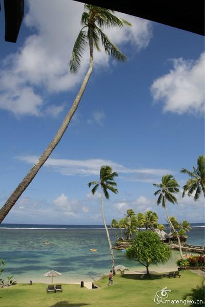 阳光沙滩椰子树简笔画