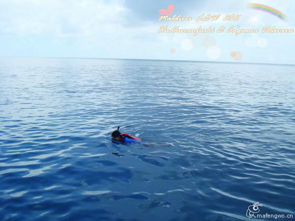马尔代夫两岛游白金岛 薇拉瓦鲁岛(av岛).碧海蓝天之旅,海量照片hoho.